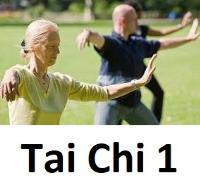 Sport Je Fit Tai Chi 1